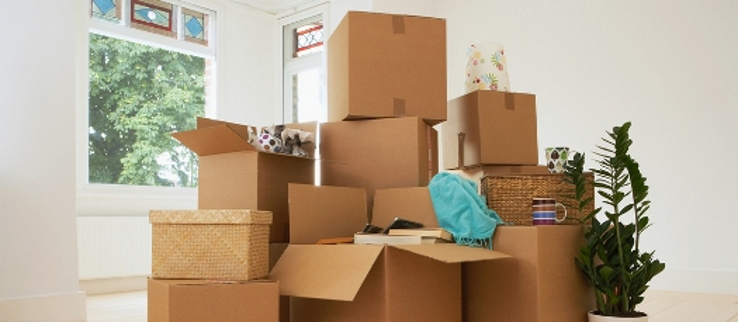 Domestic Packing Service in India